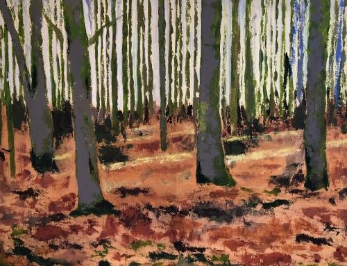 Træer, Stengade, Tranekær